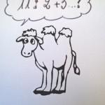 cammello e numeri2